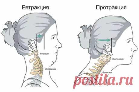 Как предотвратить укорочение шеи и обвисание лица - Леди Молодость