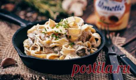 Macaroni with chicken and mushrooms in creamy sauce