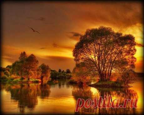 Золотая Осень..