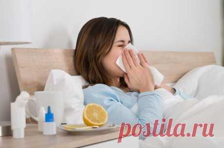 Ошибки «Антивируса». Как нельзя лечиться от гриппа | Здоровая жизнь | Здоровье | Аргументы и Факты