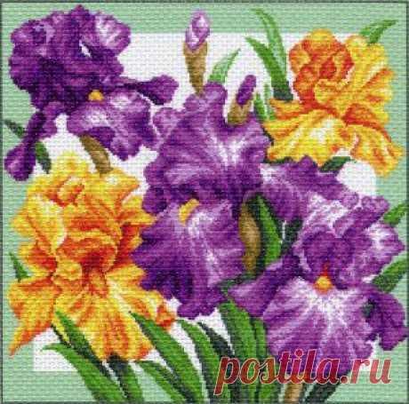 Ирисы 1104Н. Вышивка нитками > Матрёнин Посад > Цветы.