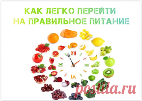 Как перейти на правильное питание легко
