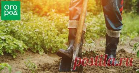 Как делать плодородную землю из песка: пошаговая инструкция Каждый огородник мечтает об идеальной почве на участке – рыхлой, мягкой, плодородной. В такую брось семена любой культуры, поливай время от времени, да получай по осени отменный урожай. Увы, на практике дело обстоит совершенно по-другому – грунт на участке нужно внимательно исследовать и по возможности облагораживать.
