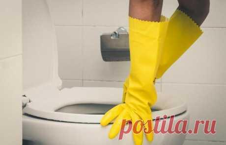 Простой и эффективный способ очистки, который заставит унитаз благоухать и оставаться чистым
