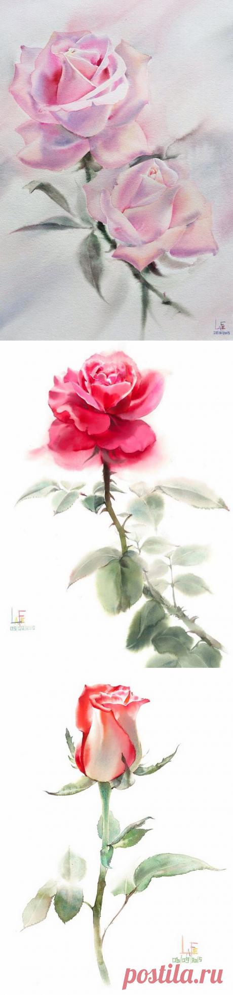Розы... Художник - акварелист Sattha Homsawat (LaFe), Тайланд.