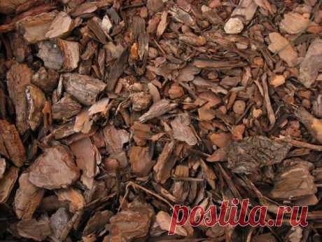 Than it is possible to mulch in the fall – options for every taste