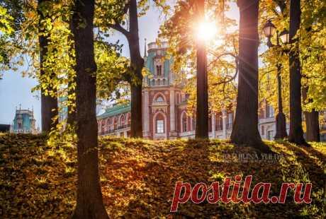 Осень в Царицыно. Автор фото — Yuliya Baturina: