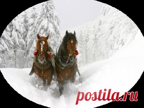 Зимний пейзаж PNG