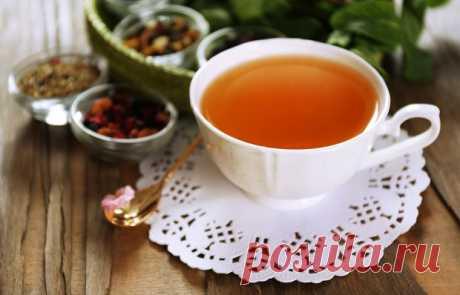 Семь самых полезных видов чая, которые надо иметь на кухне • INMYROOM FOOD