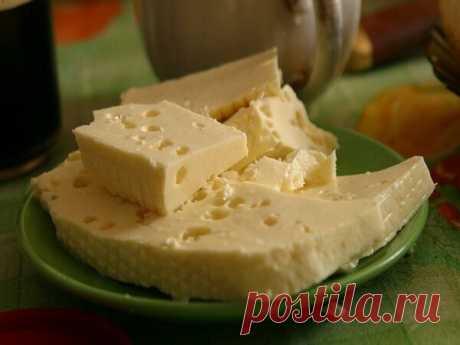 Больше сыр в магазине не покупаю, научилась делать его сама! | Я готовлю! | Яндекс Дзен