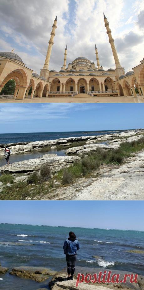Повышенный интерес дагестанцев к длине шорт туристов. Не проще построить женские пляжи? | Путник_ | Яндекс Дзен