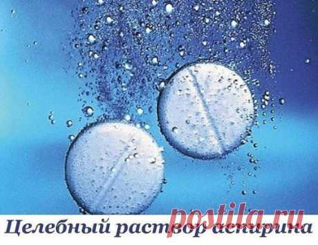 Целебный раствор от шпор, варикоза и остеохондроза  Возьмите 10 таблеток аспирина и разотрите их в порошок, залейте 250 г водки. Дайте настояться в течение двух суток. У вас получится взвесь, так как таблетки полностью не растворятся.  Возьмите марлевую повязку (или бинт), смочите ее в растворе, приложите к пяточкам, затем оберните полиэтиленом, сверху наденьте носок и оставьте на ночь. Утром все снимите, сполосните ноги и смажьте их кремом.  Делать так надо каждый день, уже после первой же п