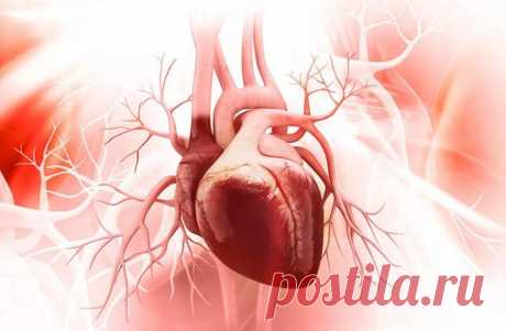 Важный минерал для вашего сердца Микроэлементы играют важную роль в функционировании организма и во многом определяют состояние здоровья человека.Одним из таких минералов является магний. Статистика свидетельствует, что примерно 50-8...