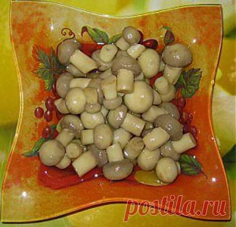 быстрые маринованные грибы, шампиньоны маринад | Радуга