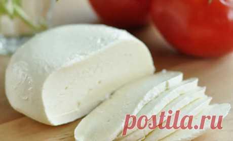 Берем пакет молока и получаем домашний сыр на 2 недели
