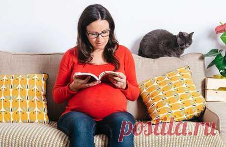 Бесполезные советы, которыми окружающие надоедают беременным / Малютка