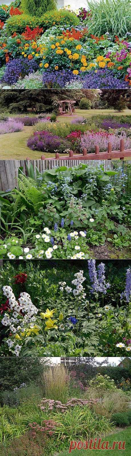 Клумбы непрерывного цветения: неувядающее украшение сада / Ландшафтный дизайн / 7dach.ru