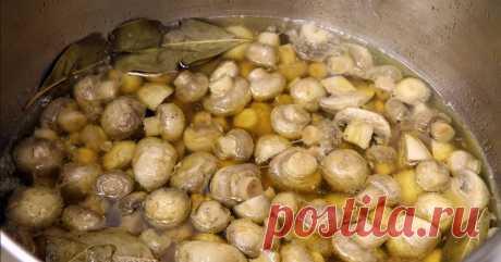 Дежурный рецепт маринованных грибов к праздничному столу Улетели за один присест.