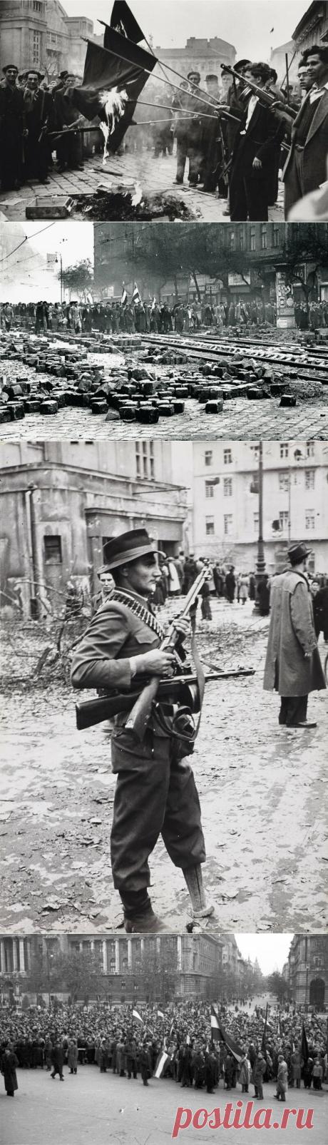 Восстание в Венгрии. Укрощение строптивых | Империя | Яндекс Дзен