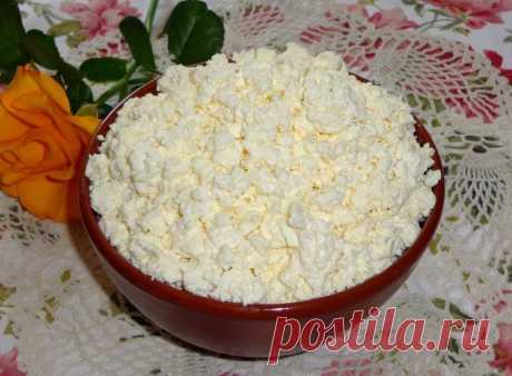 Творог из молока и кефира рецепт с фото пошагово - 1000.menu