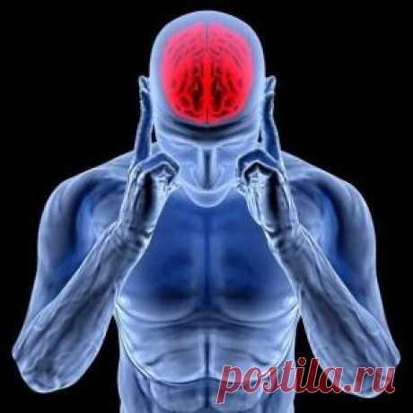 Эти упражнения улучшают кровоснабжение мозга, выпрямляют позвоночник, освобождает сосуды от зажимов