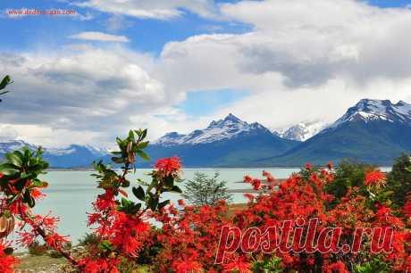 Национальный парк Лос-Гласьярес в Аргентине