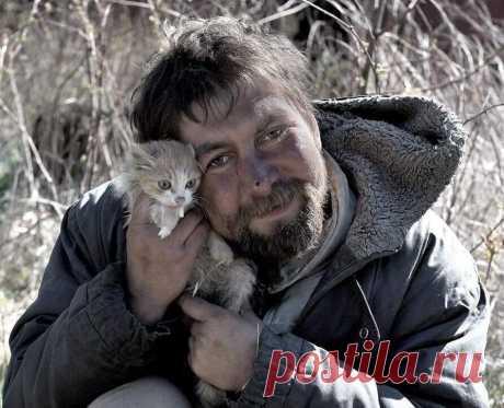 Погладь кота приходящего - Мир души, иллюзии и совершенство сознания - медиаплатформа МирТесен