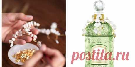 5 самых красивых ароматов на весну