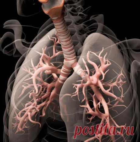 Дыхательная гимнастика, которая поможет при бронхите / Будьте здоровы