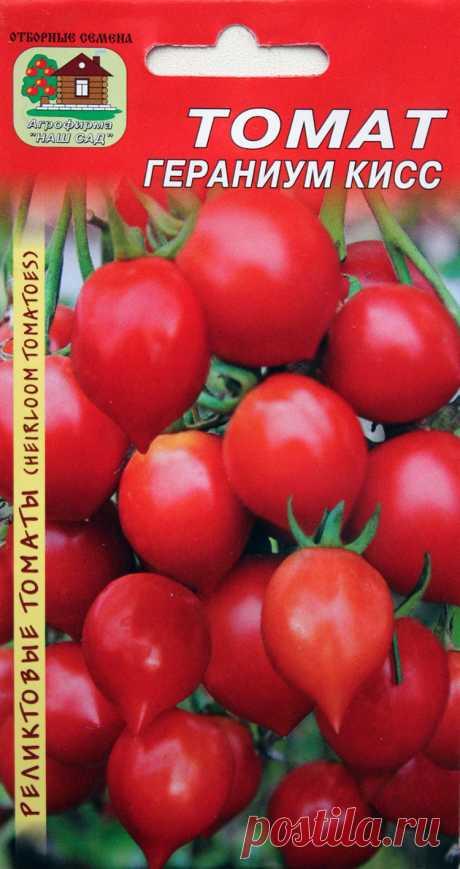 """Tomato \""""A geranium kiss\"""" - Sadovodka"""