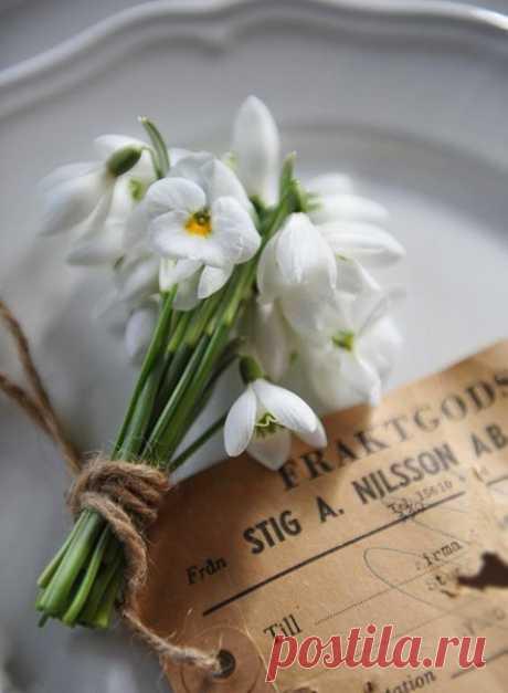 Сегодня мне так захотелось весны! Её аромата и теплых объятий, Чтоб нежно касаясь зеленой травы, Вдыхать её запах пьянящий...