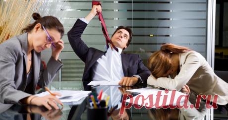 10 фраз, которые стоит чаще произносить на работе каждому Правильно подобранные слова повысят доверие и командный дух.