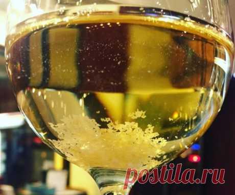 Что делать, если у вас два мешка яблок? Мастер-класс по приготовлению яблочного вина | Статьи (Огород.ru)