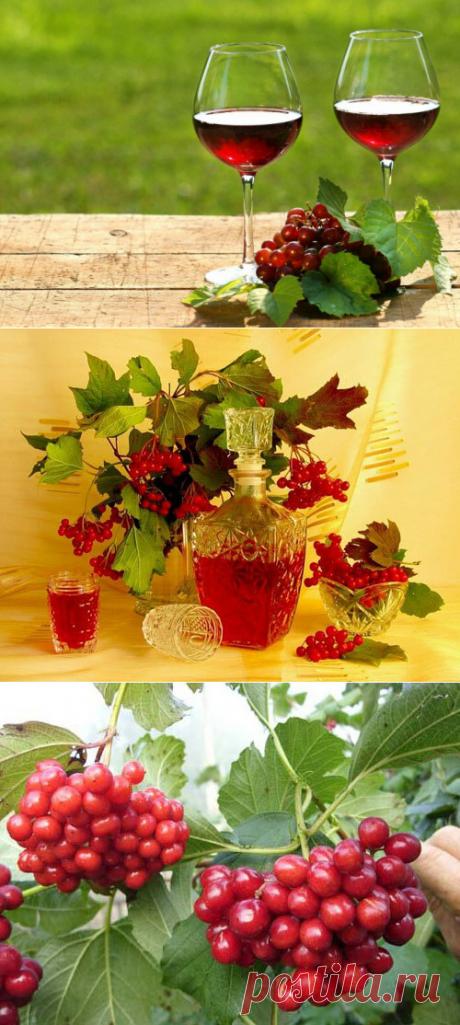 Калиновое вино своими руками. Как сделать столовое, десертное или ликерное? | Про самогон и другие напитки 🍹 | Яндекс Дзен