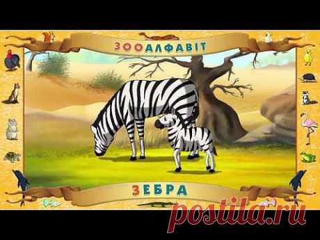 ▶ Мультіпедія Зоологічний український алфавіт - YouTube