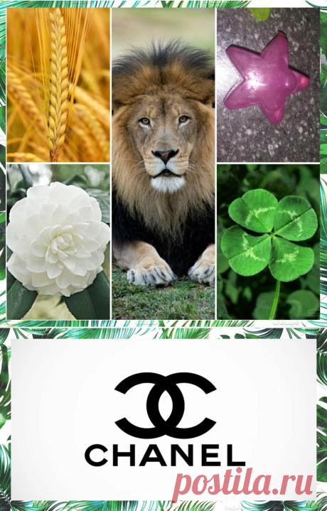 Символ Дома Шанель-талисман удачи бренда. Как же он возник? | Модный Интерес | Яндекс Дзен