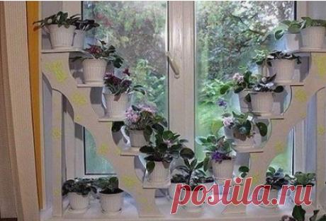 Теперь Все Цветы Поместятся на Подоконниках | Поделки и Подарки Своими Руками | Яндекс Дзен