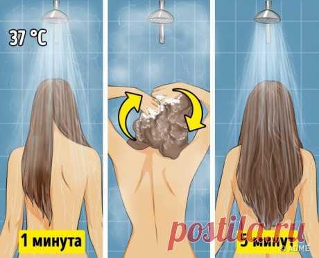 Стилисты советуют учитывать 9 правил, чтобы волосы оставались чистыми и объемными дольше — 1001 СОВЕТ