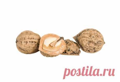 Маньчжурский орех Маньчжурский орех обладает множеством полезных и лечебных свойств, из него делают настойку, которая помогает укрепить организм. Есть ли противопоказания к применению ореха и как его выращивать, в чем заключается посадка саженцев и уход за ними?