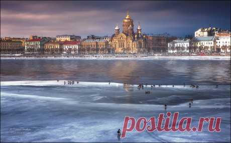 35PHOTO - Михаил Воробььев - Зима в Санкт-Петербурге...