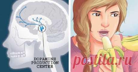 Как повысить уровень допамина, чтобы вы никогда не чувствовали себя грустными, напряженными или подавленными снова - Советы для женщин