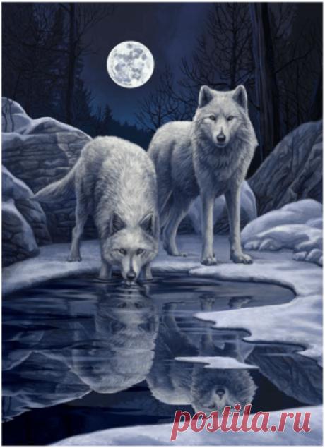 Животные | МореСхем - Part 26