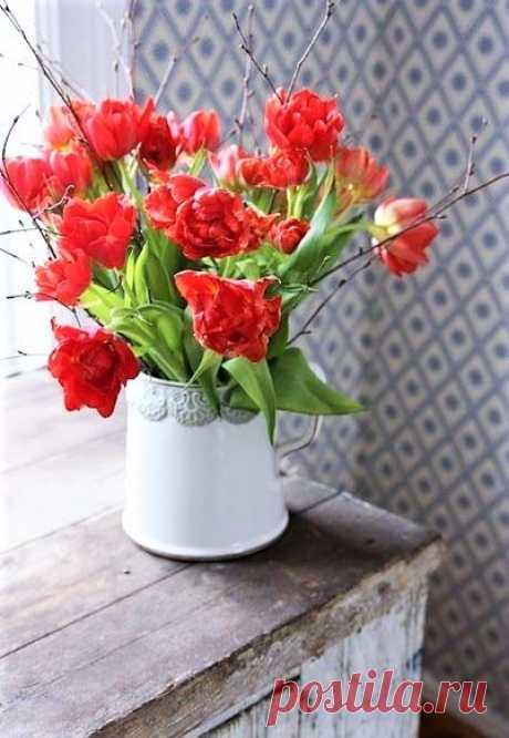 (6) Flowers