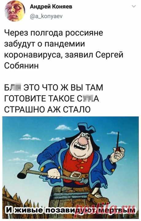 Смешно! Весёлая подборка для поднятия настроения👍🤣   Мадам Геко   Яндекс Дзен