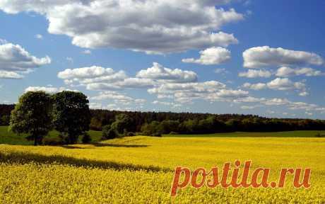ocharovatelnyy_peyzazh_1920x1200.jpg (Image JPEG, 1920×1200 pixels) - Scaled (39%)