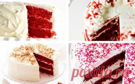 Торт Красный бархат Red Velvet Cake в домашних условиях | ТестоВед