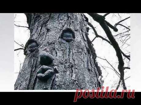 (+1) тема - ЧУДЕСА ПРИРОДЫ! | Непутевые заметки