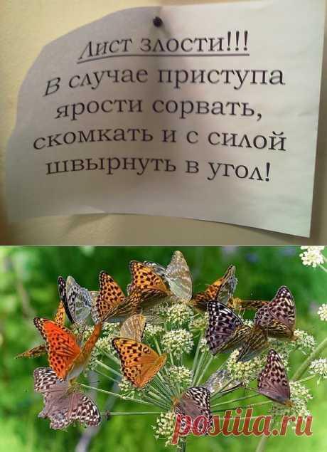 Стресс — синоним страха - mad1959— я.ру