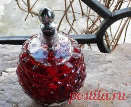 Барбарисовая наливка на водке (спирте, самогоне)   АлкоФан   Яндекс Дзен