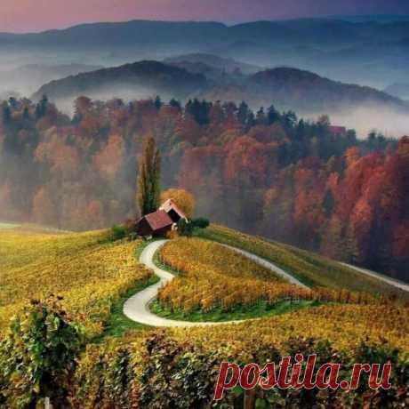 Шли по дороге – Доброта и Счастье, а вслед за ними – Горе и Беда. И Доброта спросила, вдруг, у Счастья: - Зачем, за нами, «те» бредут всегда? И улыбнулось Счастье, отвечая: - Они нужны живущим, в каждый век. Чтоб истину, добра и зла, сличая, всему знал цену, в жизни, человек. Как пот, не может быть, без вкуса соли. Как день без ночи, пламя без огня. Так опыт жизни, не познать без боли. И нет пути, где без крови, ступня. Вот по тому, мы с ними неразлучны, в любви и дружбе, ...